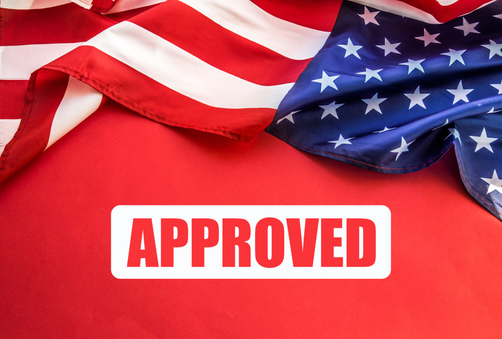 Approved Visa Application